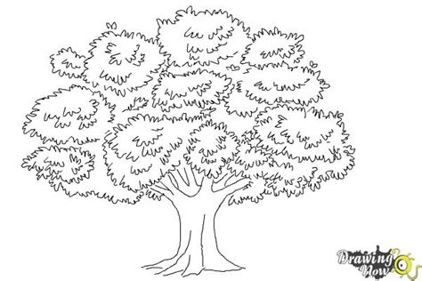Realistic Tree Coloring Page | how to draw a realistic tree drawingnow