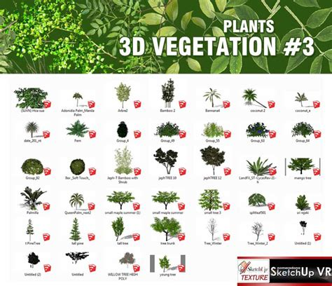 plant layout google sketchup textures and vegetation available on fb sketchup 4 site