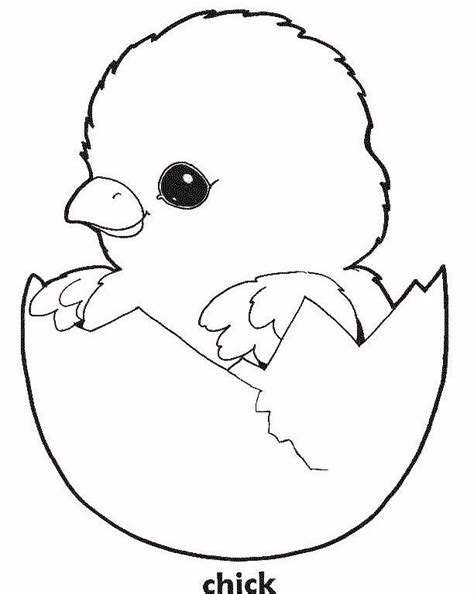 chicken coloring page free printable easter chick coloring sheet baby chick coloring page