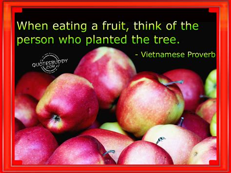 fruit quotes fruit quotes quotesgram