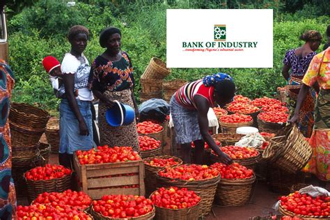 boi house insurance boi wants agro business owners to access n15bn loan sme