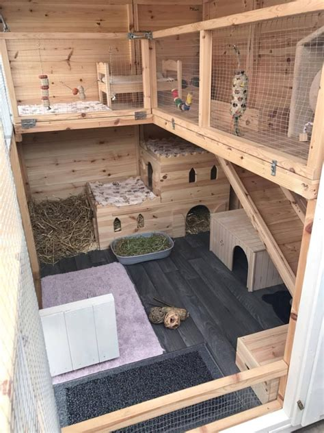 Guinea Pig Shed Ideas by A Fantastic Set Up Here For Bunnies To So Much In Thank You For Sending This In