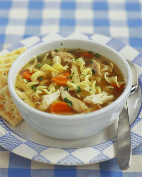 Great Chicken Soup by Chicken Noodle Soup Recipe How To Make Chicken