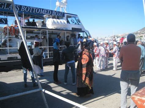 glass bottom boat cape town hout bay harbour entertainment of visitors from the glass