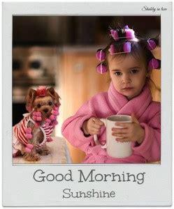 Cute Good Morning Meme - funny cute silly good morning memes