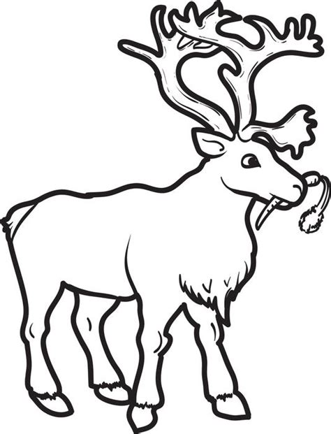 winter deer coloring page winter coloring page for kids of a reindeer eating carrot