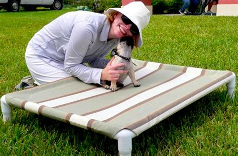 diy raised dog bed diy elevated dog bed like kuranda pet project