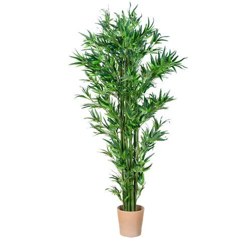 piante ufficio piante da ufficio 11 piante da ufficio per migliorare l