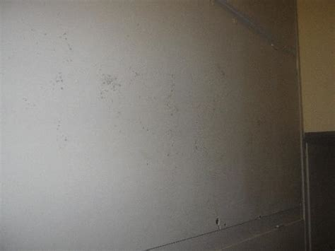 mold on the ceiling just look picture of galil hotel netanya tripadvisor