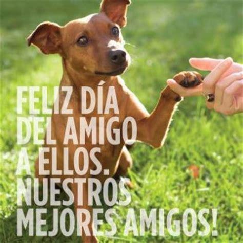 dias de perros el imagenes feliz dia del perro