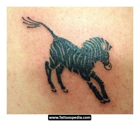 zebra tattoo walnut creek best 25 zebra tattoos ideas on zebra drawing