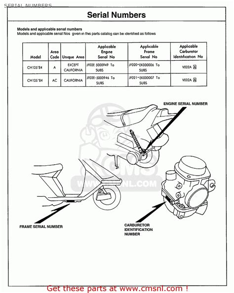 dio 50 scooter wiring diagram dio free engine image for