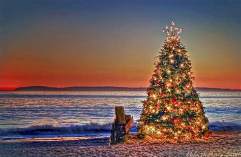 styleculture world christmas tree