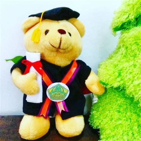 Boneka Wisuda 35cm 12 best images about boneka wisuda teddy on you and products