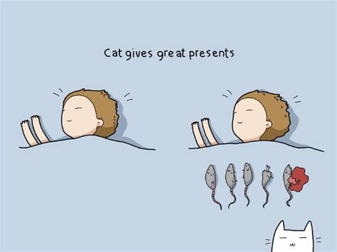 how to get a and cat to get along 10 reasons you should get a cat
