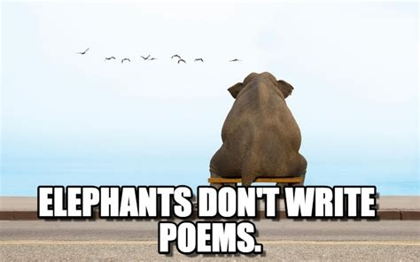 Elephant Meme - elephants don t write poems elephant meme on memegen