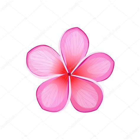 fiore designs bellezza fiore design piatto isolato vettoriali stock