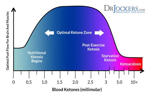 test your level 5 ways to measure your ketones drjockers