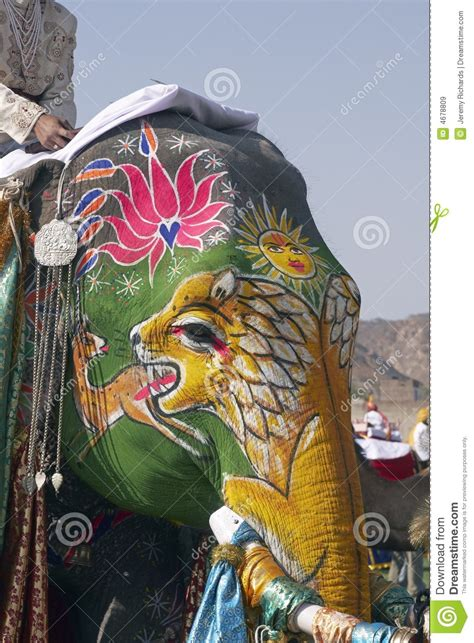 decorated indian elephant royalty  stock images