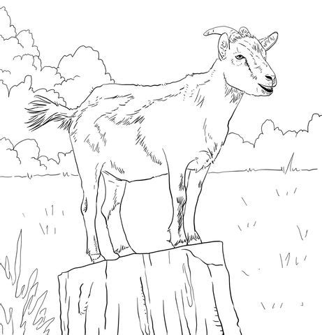 goat farm coloring pages 672 best images about wednesday crafts on pinterest coat