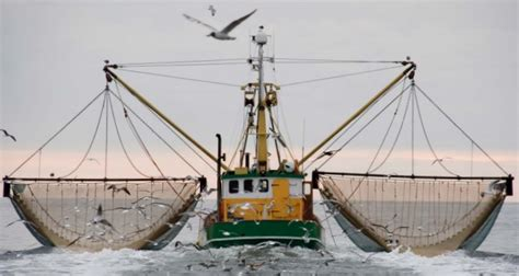 fishing vessel safety equipment uk club reducing the risk of collisions with fishing