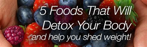 Foods That Will Detox Your by 5 Foods That Will Detox Your Lifecell
