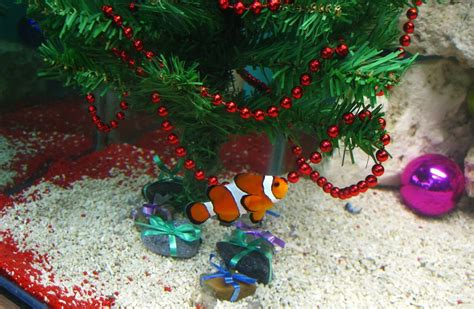 christmas fish aquarium decorate ideas wishforpets