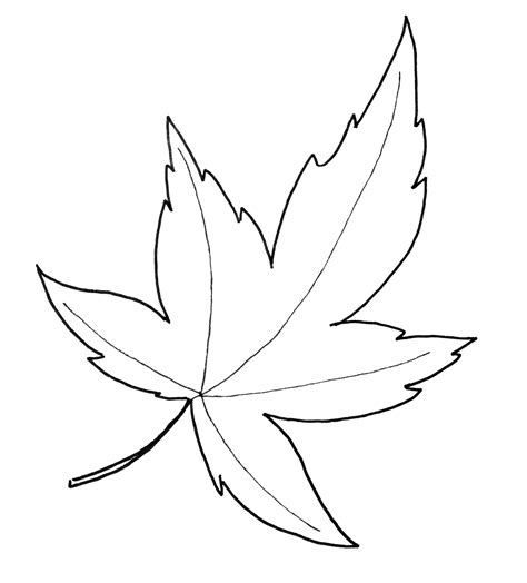 leaf template fall leaf pattern printables just paint it