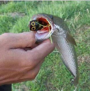 Jump Frog Killer Frog Umpan Gabus Lariss cara membuat jump frog killer dari kayu kailbayu