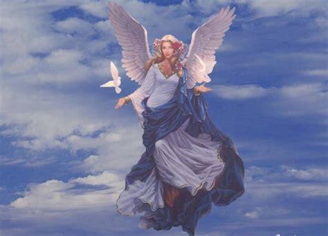 angelo azzurro testo ceccherini testi e immagini di psicologia
