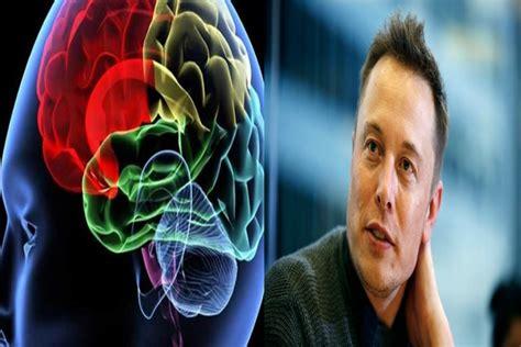 elon musk neural link neuralink elon musk s new company will plug device into