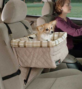 booster for dogs booster seats for cars