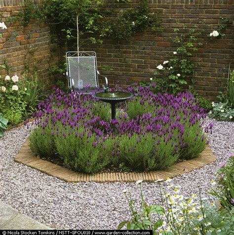 Lavender Garden Ideas 33 Best Images About Landscaping With Lavender On