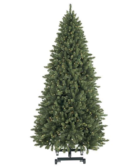 evergreen supreme snap tree tree classics