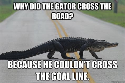 Florida Gator Memes - popular florida football memes from recent years