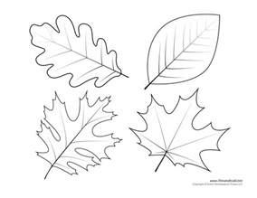 Template Leaves by Leaf Templates Leaf Coloring Pages For Leaf