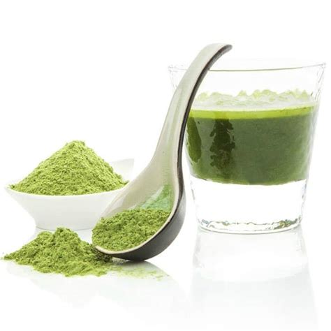 supplement greens greens supplement review a look at the top 13 brands