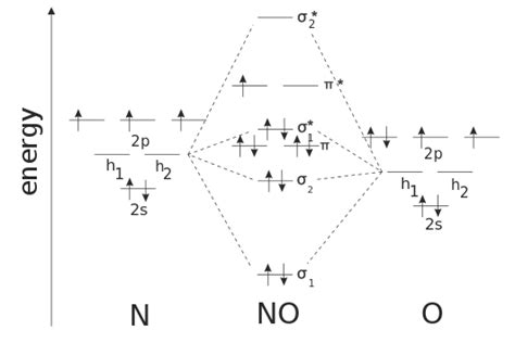 molecular orbital diagram for no2 file nitric oxide mo diagram svg wikimedia commons