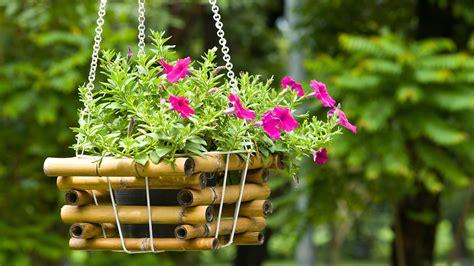Top 10 Flowering Plants For Hanging Baskets Hanging Flower Garden