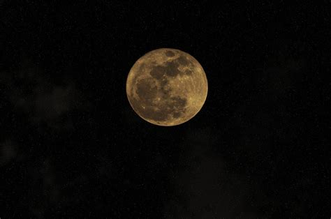 there s a strawberry moon tonight but what even is that there s a moon out tonight photograph by bill cannon