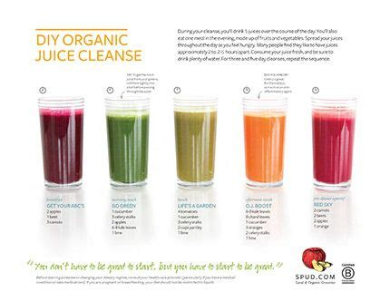 Juice With Drew 5 Day Detox by Diy Organic Juice Cleanse Recipes 5 Juices A Day You Can
