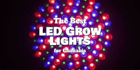 best led grow lights on the market the best led grow lights for the complete buying