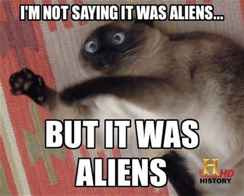 It Was Aliens Meme - alien guy funny quotes quotesgram