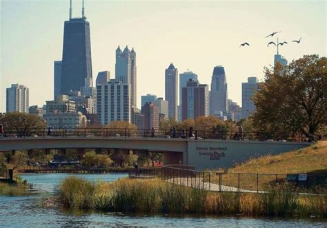 lincoln park weather 15 reasons chicago is the best place to live and call home