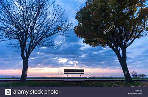 along with the gods canada a park bench along the beach boardwalk in goderich ontario