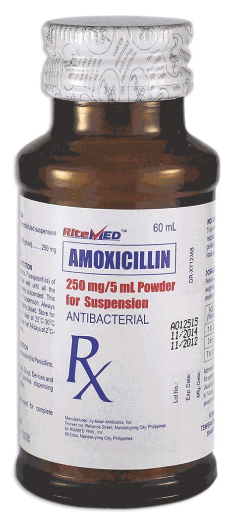 Amox Clav Shelf by Amoxil 250 Mg 5 Ml Acheter Tentex Royal G 233 N 233 Rique