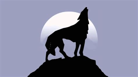 howling sounds cool pictures of wolves howling www pixshark images galleries with a bite