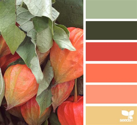 design seeds autumn hues design seeds