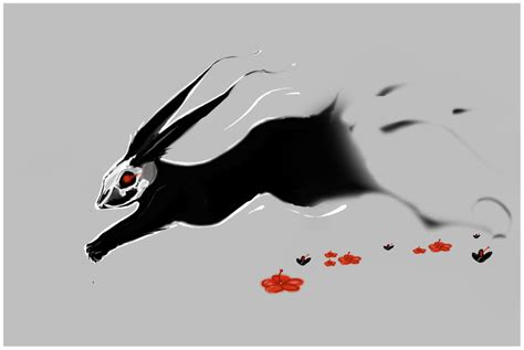 black rabbit of inle by lochi on deviantart