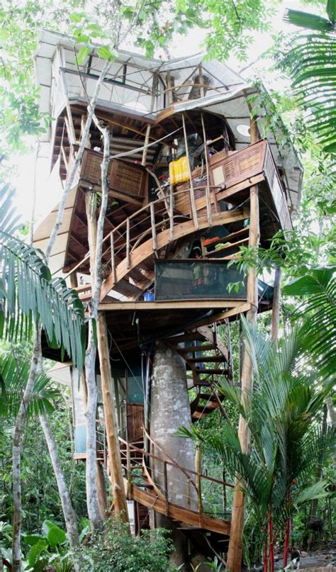 Real Treehouse | living abroad in costa rica 187 quien is mas treehouse life